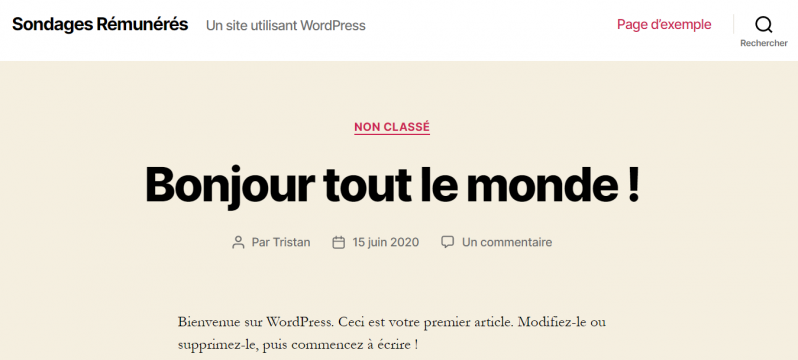 Mon super site wordpress